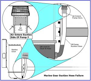 Marine-Tranny-Hoses